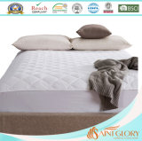 Saint Glory Cheap Bedding Micro Plush Mattress Protector