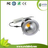 Shenzhen Supplier 40W COB LED Downlight for Living Room