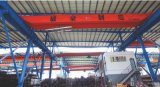 Lh Type Electric Hoisting Crane with 12 Years Experiences