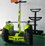 Ecorider off Road Double Battery 72V 4000W Electric Golf Scooter