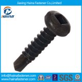 Square&Phillips Drive Black Pan Head Self Tapping Screw