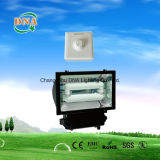 Dimmable Induction Bulb