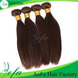 Wholesale Top Premium Hair Brazilian Virgin Hair for Women