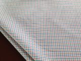 Check Fabric Yarn Dyed Fabric Poplin for Shirt (001)