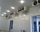 Cold Room Warehouse Refrigerated Cold Storage Room