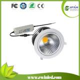 10W/20W/30W/40W/50W High Quality LED Downlight for China Supplier