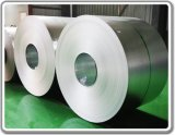 Galvanized Steel Coil (GI)