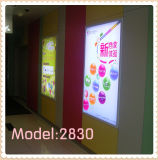 Indoor Waterproof Advertising LED Signboard (Model 2530)
