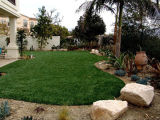 Garden Grass for Decoration Backyard (E530218DQ12033)