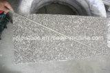 G664 Misty Brown Granite Floor Thin Tile / Paving Tile
