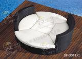 Outdoor Sofa Sets, Patio Rattan Furniture, Garden Sofa Sets (SF-301)