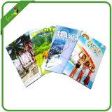 Professional Pamphlet Leaflet Flyer Booklet Brochure Printing