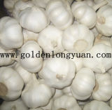 Jinxiang Pure White Fresh Garlic