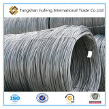 7mm SAE 1008 (Cr) Steel Wire Rod