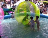 Water Ball (DNL-WB-001)
