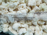 New Crop Best Quality Frozen Cauliflower 3cm-5cm Size (BRC, FDA, ISO, KOSHER, HALAL)