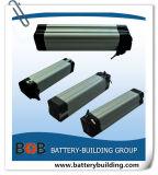 48V 10ah Silver Fish Type Lithium Battery for E-Bike
