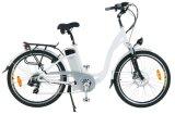 E-Bike (TDF27Z)