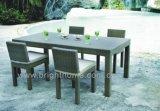 Outdoor Furniture / Dining Set (BG-N05)