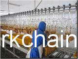 Chain, Trolley Wheel &Bracket for Overhead Conveyor, Chicken Slaughter House