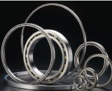 Thin Wall Deep Groove Ball Bearing with Super Quality and Cost Effective Price