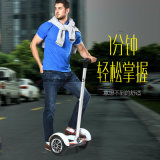 10 Inch Tt Electric Scooter with Front Post