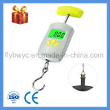Electronic Postal Fishing Traval Scales with Weight Lock Max 110lb 50kg Digital Hanging Luggage Scales