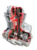 Jtx150-B Motorcycle Engine