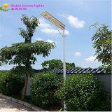 Solar Street LED Light, Solar LED Lighting with Solar Panel