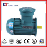 Yb2 Yb3 Explosion Proof AC Electric Induction Motor with Customize Voltage