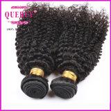 Top Quality 8A Grade Unprocessed 100% Virgin Brazilian Kinky Curly
