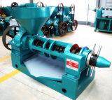 Groundnut Oil Press/Canola Seed Oil Press /Rapeseed Oil Press (YZYX10J-2)