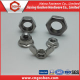 Fastener Stainless Steel Hex, Nylon, Wing, Flange Nuts