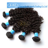 Fashion Brazilian Curly Hair Remy Human Hair Extension