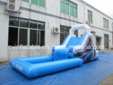 Inflatable Small Slide with Pool