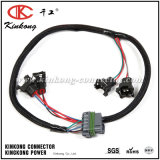 Fuel Injection Automotive Wire Harness