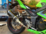 Motorcycle Exhaust Carbob Fiber Pipe/Tube
