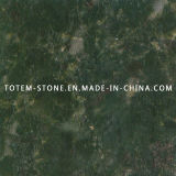 Cheap Price Butterfly Green Stone Granite for Countertop, Tile, Slab