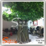 New Design Decorative Outdoor Artificial Live Ficus Plants Tree