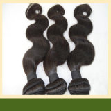 Wholesale Brazilian Hair Virgin Brazilian Hair Extension