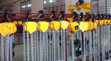 Chain Hoist (HSZ)