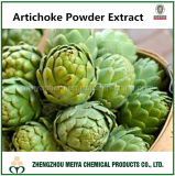 Factory Produce Artichoke Powder Extract with Cynarin 2%-10%