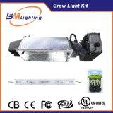 Guangzhou Plant Hydroponic CMH Kit Double Ended HPS 630 Watt Ballast Grow Light Hood with LED CMH Bulb