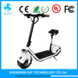 Foldable Electric Kick Scooter with Li-Battery 60V 10.4A
