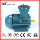 380V Yb3 Single Phase Series Anti-Explosion AC Motor