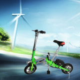 Smart Foldable Two Wheels Electric Bike with Screen/Accelerator