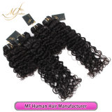 Unprocessed Virgin Brazilian Curly Wholesale High Quality Human Hair Weave