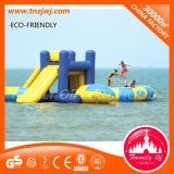 Customized Inflatable Dinosaur Bouncy Castle Inflatable Water Park Games