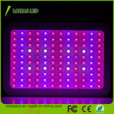 High Power LED Plant Light 720W Full Spectrum Hydroponic Grow Light
