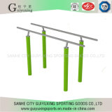 High Quality Outdoor Fitness Equipment of Parallel Bars